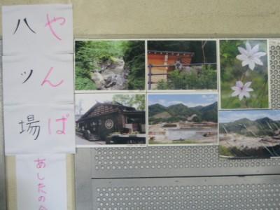 얀바 댐 건설 반대투쟁